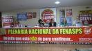 Plenária Nacional da Fenasps